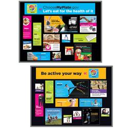 MyPlate Food/Activity Bulletin Board Kits 1375824